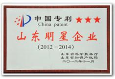 海汇集团为中国专利山东明星企业
