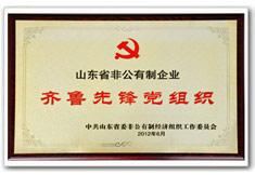 山东省非公有制企业齐鲁先锋党组织