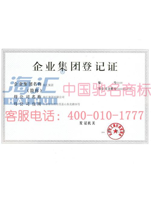 海汇集团之企业集团登记证