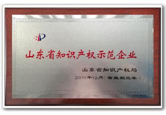 海汇集团,山东省知识产权示范企业