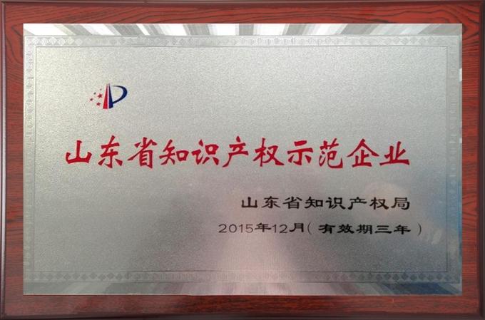 海汇集团为山东省知识产权示范企业