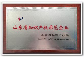 888真人官方网站为山东省知识产权示范企业