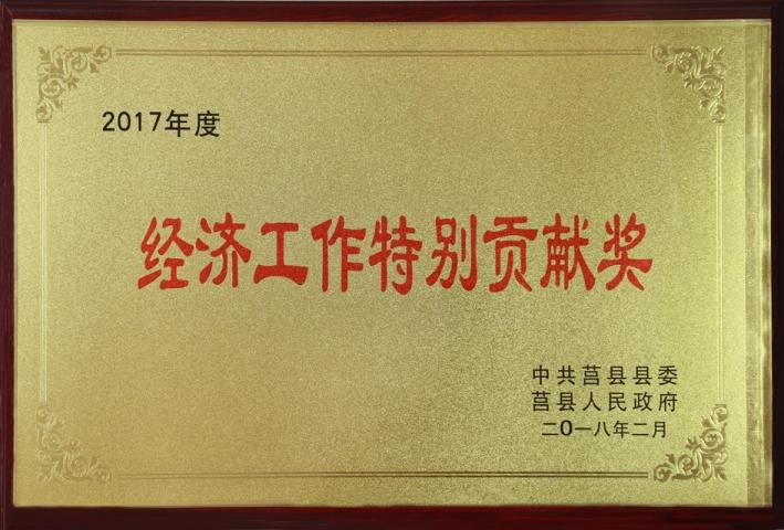 海汇集团荣获经济工作特别贡献奖荣誉称号