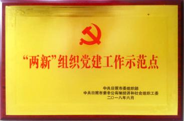 """集团党委荣获""""两新""""组织党建工作示范点称..."""