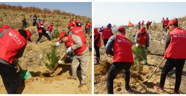 海汇集团团委组织青年志愿者参加义务植树活...